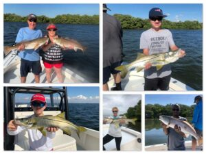 Tampa Bay Fall and Winter Fishing